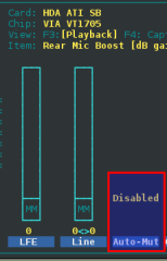 disable Auto-Mute Mode?
